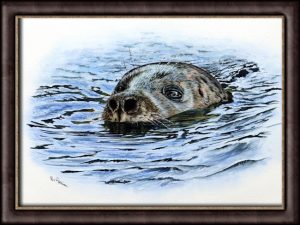 Watercolor video lesson on painting a seal in realistic water by Paul Hopkinson