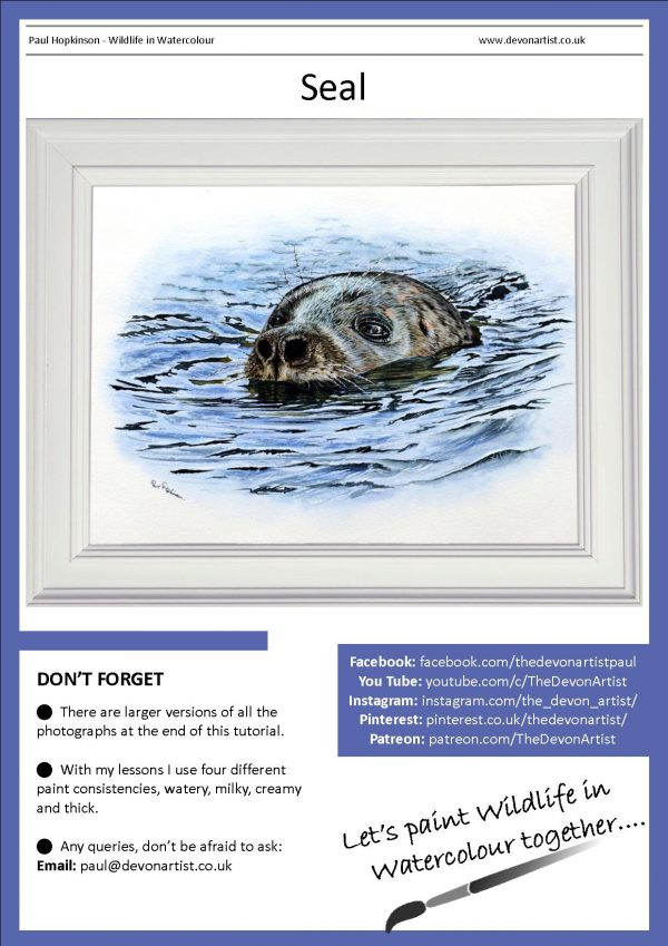 Watercolour pdf tutorial on painting a realistic seal