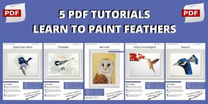 How to paint realistic birds in watercolor, 5 pdf lessons