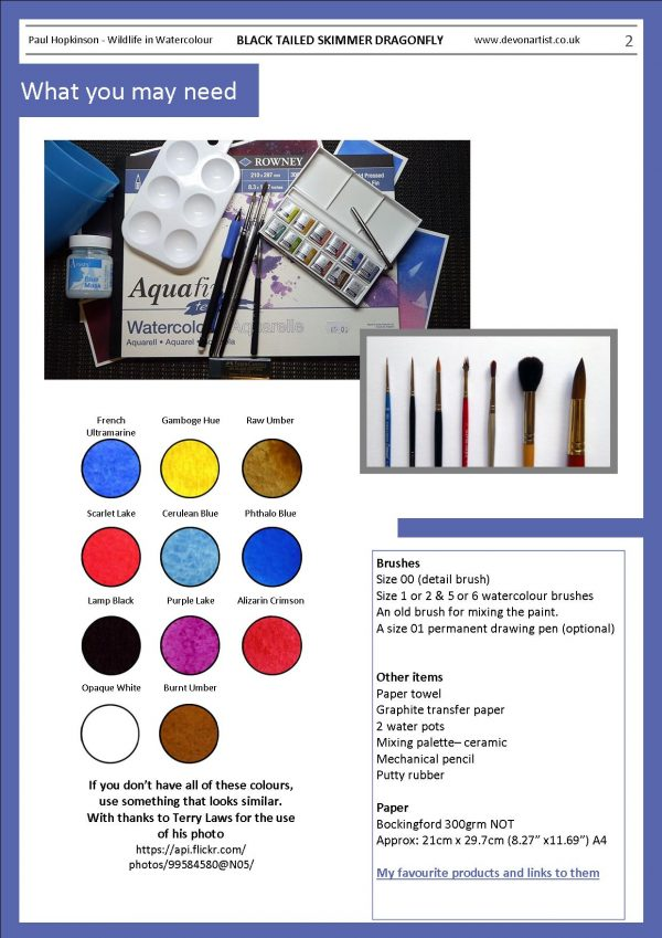 Materials needed to paint a dragonfly in watercolor