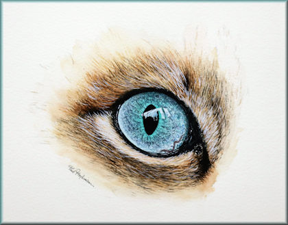 Button link to a cat's eye watercolour video tutorial