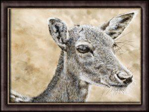 Original watercolor painting of a deer by Paul Hopkinson