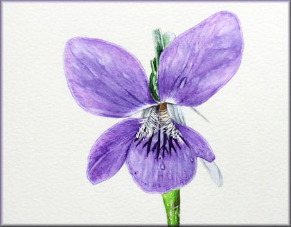 Button link to a violet watercolour video tutorial