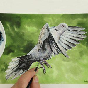 Paul Hopkinson painting a realistic watercolour bird