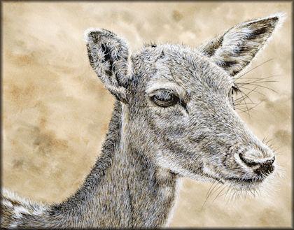 Button link to a deer watercolour video tutorial