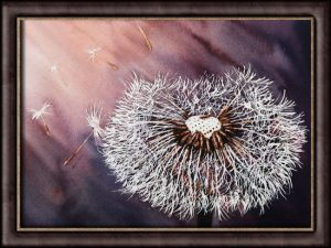 Dandelion clock watercolor painting lesson