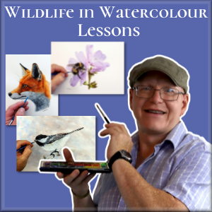 Learn watercolour wildlife painting online