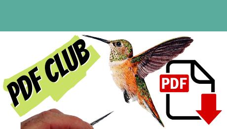 Watercolor wildlife painting PDF tutorials