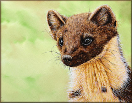 Button link to a watercolour wildlife animal painting video tutorial